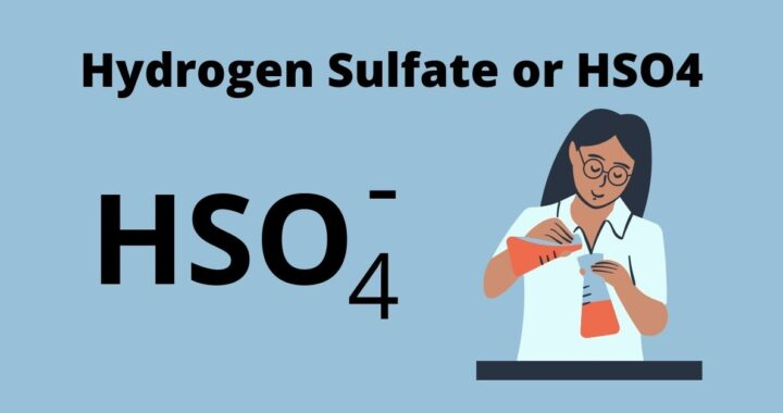 Hydrogen Sulfate or HSO4