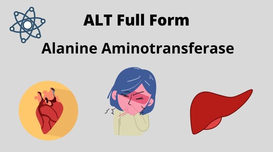 ALT Full Form