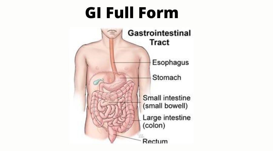 GI Full Form